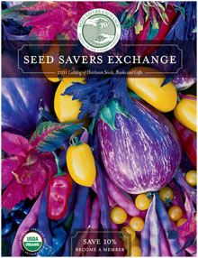 Post image for Greenhouses – Time for seeds
